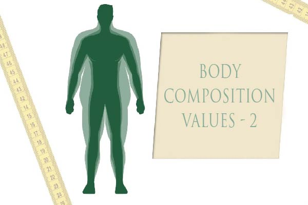 Body Composition Values